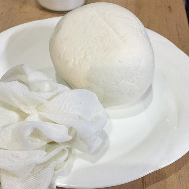 chevre-drained-natural-cheesemaking