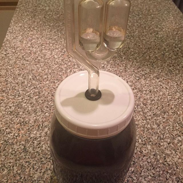 airlock-grape-lactofermented-soda